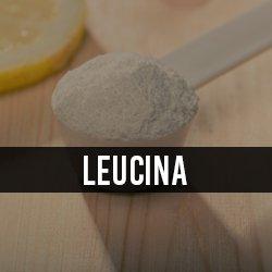 Leucina/HMB